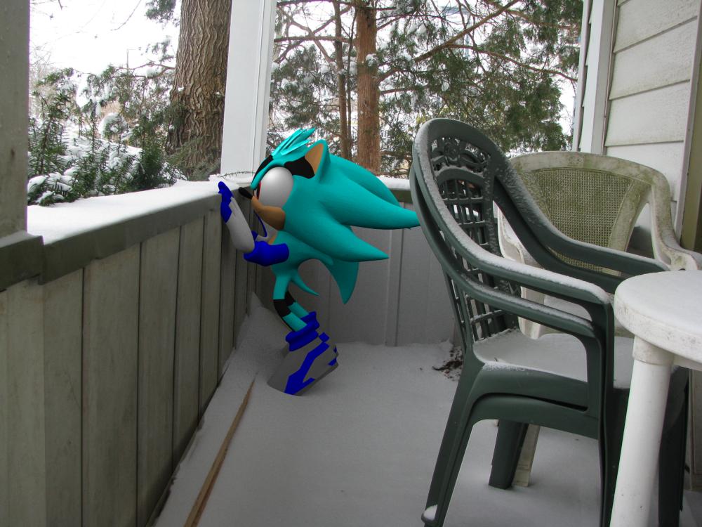 Winter - Kalto on the Porch